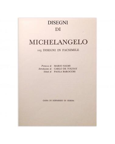 1964: Disegni di Michelangelo